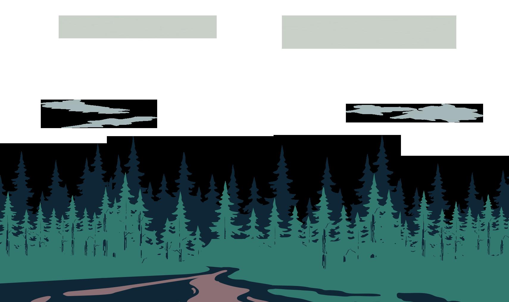 숲, 구름 배경
