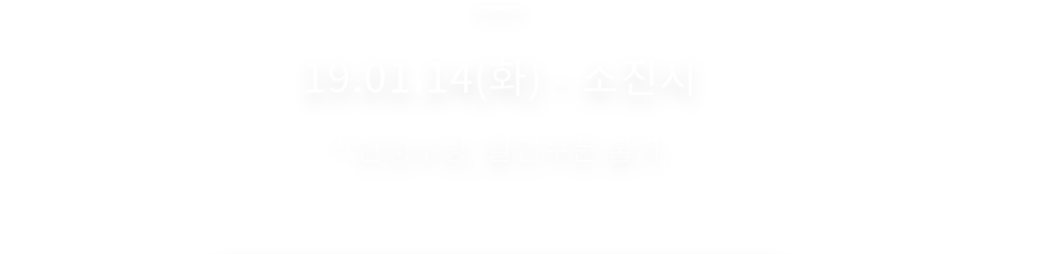 19.01.14(화) - 소진 시 한정수량, 할인크폰 불가